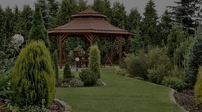 San Antonio Garden Design
